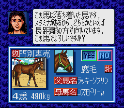 wp1sfc gedou2.png